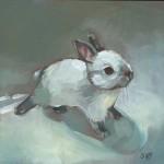 rabbitsm